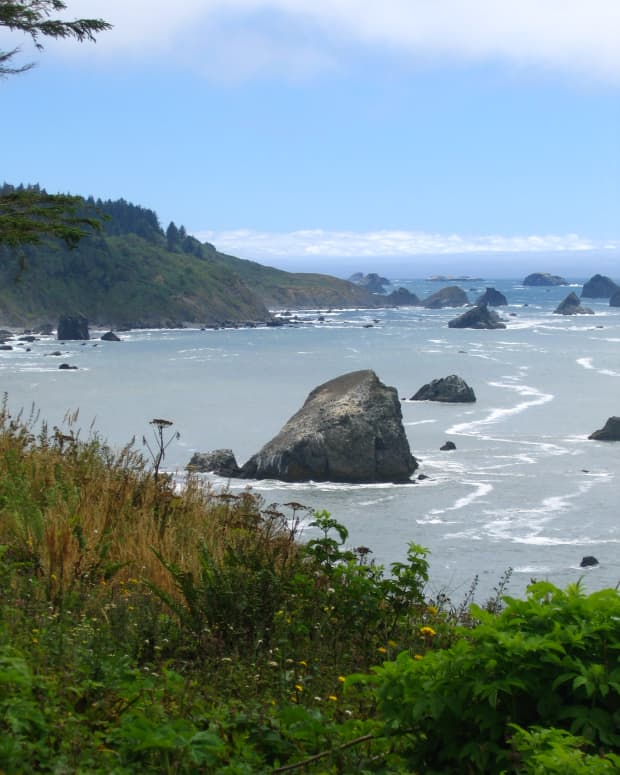 View from Palmer's Point Trail Head at Patrick's Point State Park. All photos copyright Carolyn Augustine
