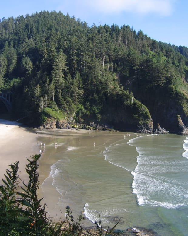 View of Devil's Elbow State Beach from Heceta Head Lighthouse viewpoint. Photo copyright Carolyn Augustine, All Rights Reserved. All of the photos in this article are from my own photo collection, taken with a Canon Powershot A95 digital camera.