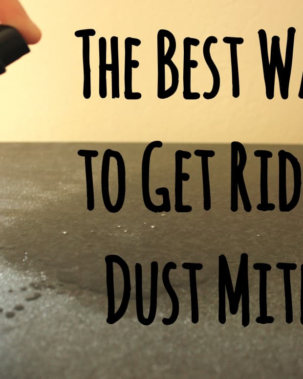 how-to-get-rid-of-dust-mites-in-your-house