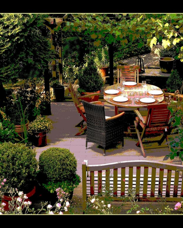 shade-gardens