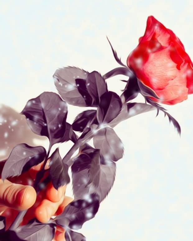 valentines-day-full-moon-magic-free-love-spells-that-work