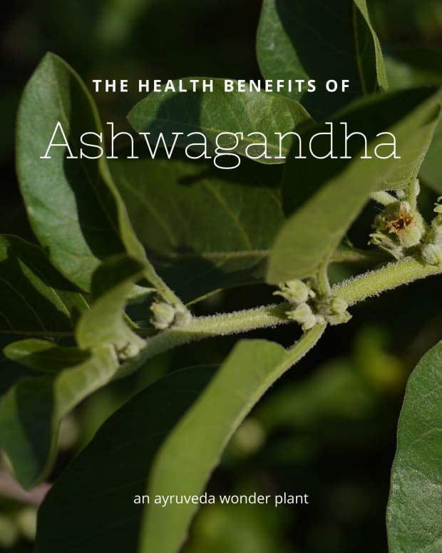 ashwagandha-withania-somnifera-and-its-health-benefits