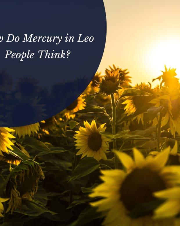 mercury-in-leo-communications