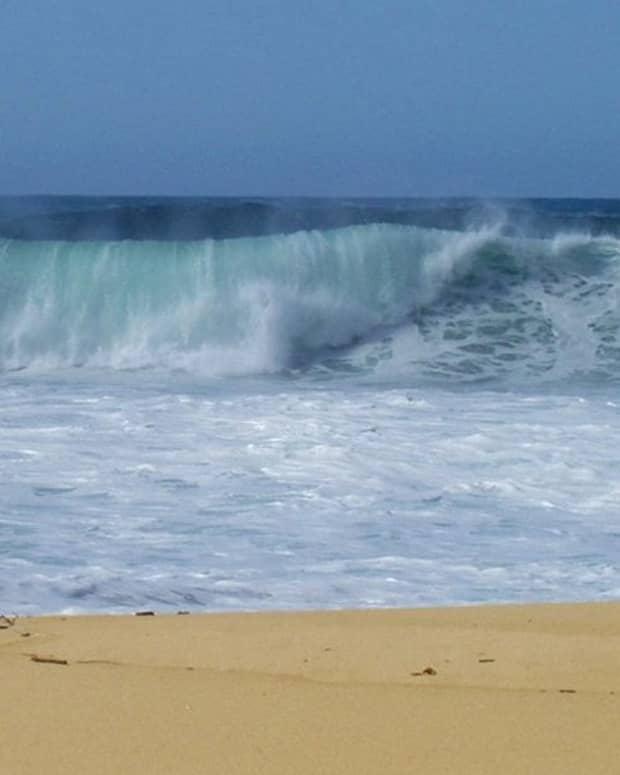 California surf / E. A. Wright 2005