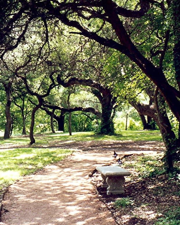 Los Patios...a nature lover's haven