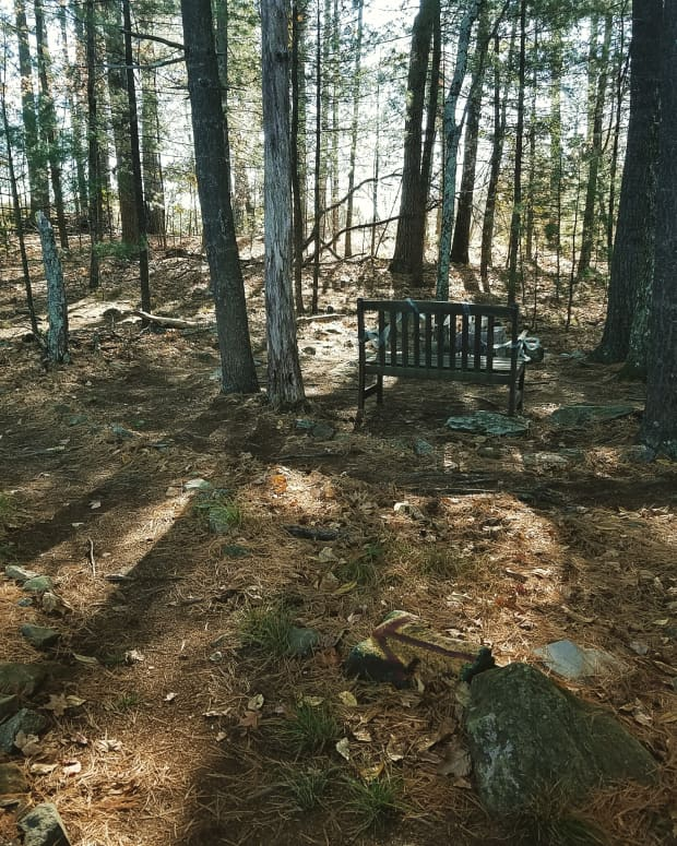 walking-the-labyrinth-path-to-honor-your-innate-wisdom
