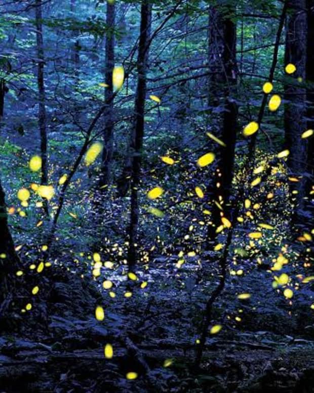 blackhole-and-lights