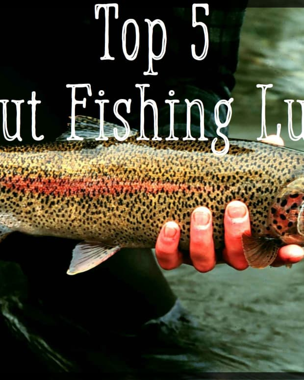 top-5-trout-lures