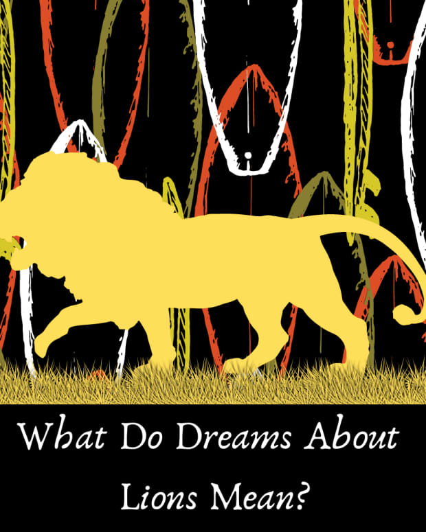 what-lions-mean-in-dreams