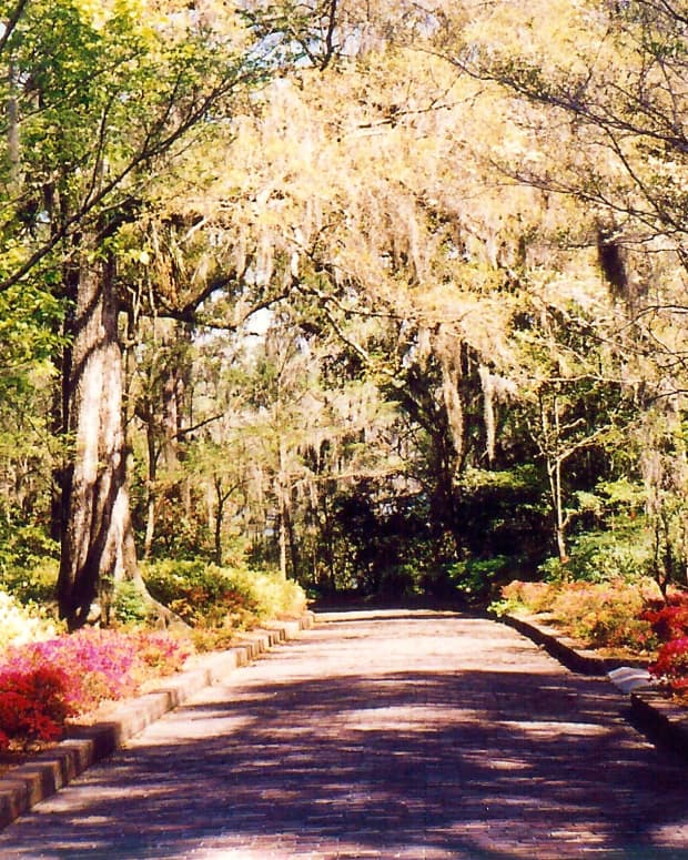 Entrance to Maclay Gardens * Photo by Peggy W