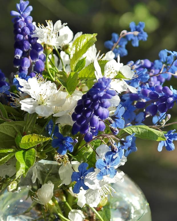 how-to-make-cut-flowers-last-longer