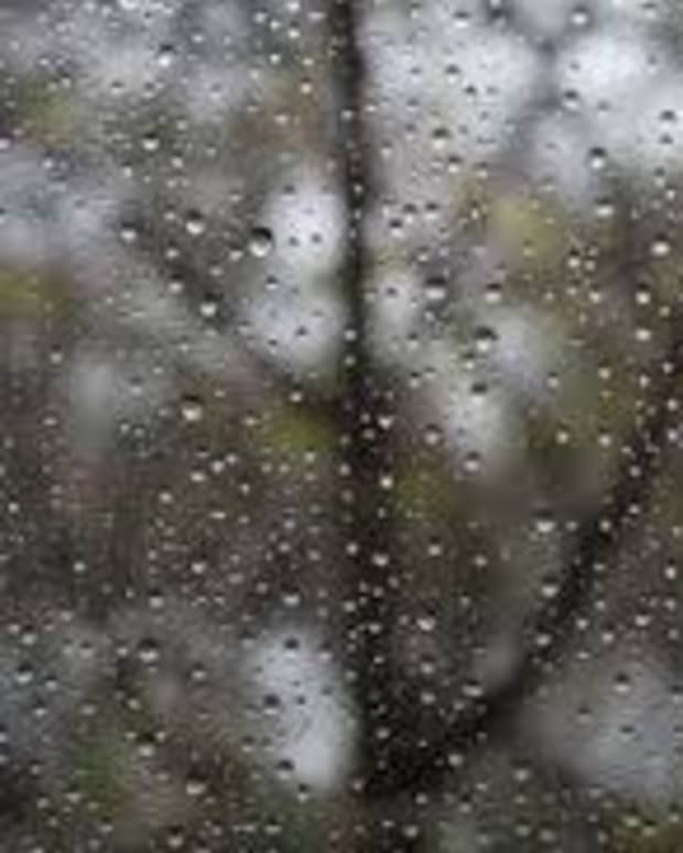 the-ectasy-the-rain-brings