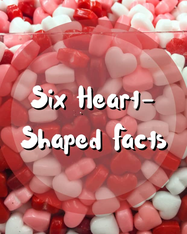 6-unusual-heart-shaped-facts
