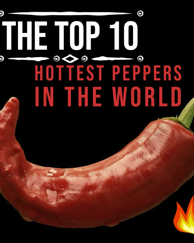 the-top-10-hottest-peppers-in-the-world