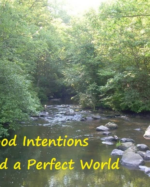 good-intentions-and-a-perfect-world