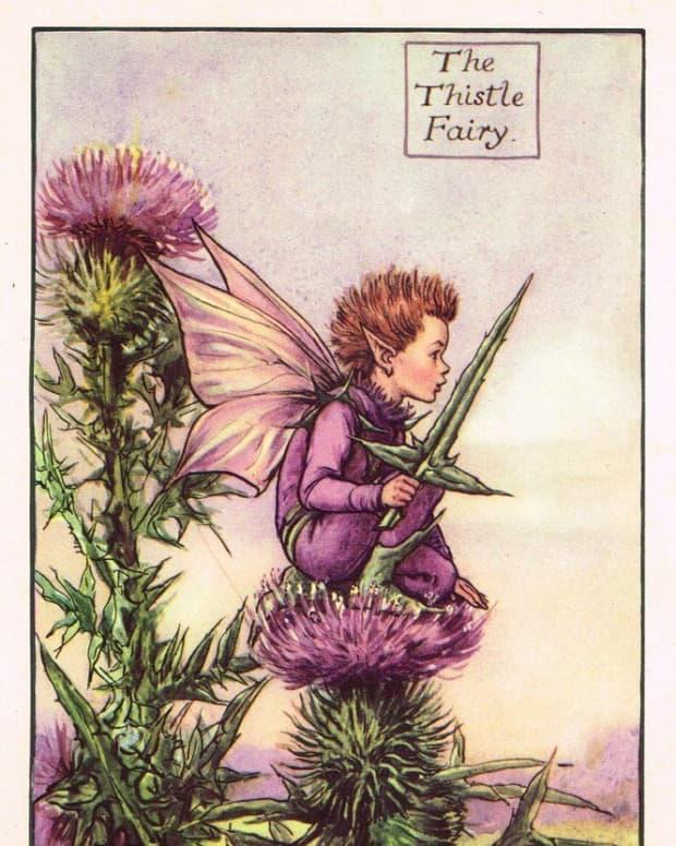 grumpy-fairy