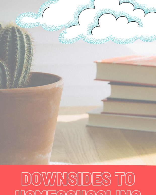 cons-of-homeschooling