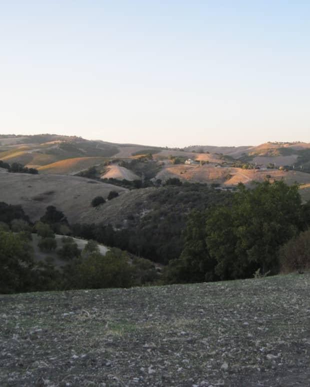 kiler-canyon-road-a-scenic-drive-in-paso-robles-california
