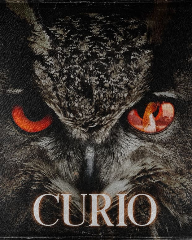 synth-album-review-curio-by-maestro-eternal