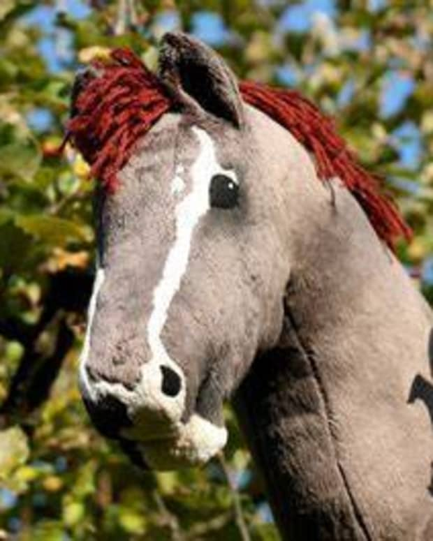 finding-a-new-hobbyhorse-to-ride
