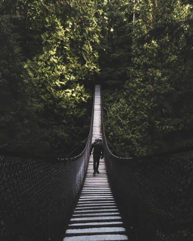 the-narrow-lanes