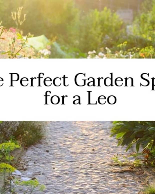 how-to-design-your-garden-like-a-leo