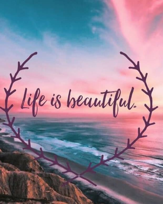 great-beauty-of-life