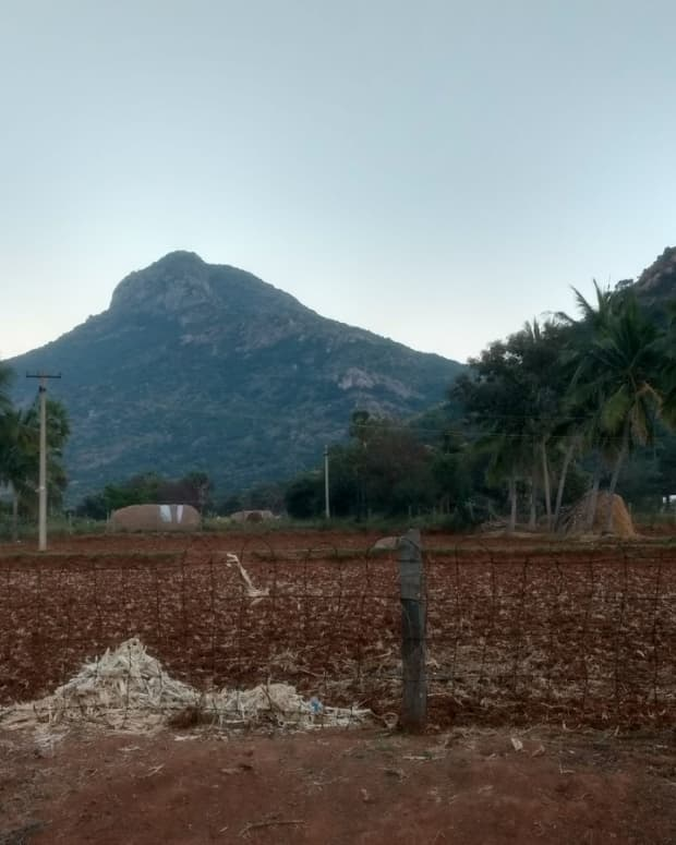 blessings-of-arunachala-a-serialized-travelogue-part-11-of-12