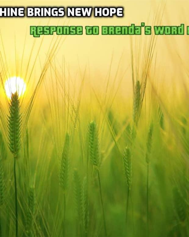 poem-sunshine-brings-new-life-response-to-brendas-word-prompt
