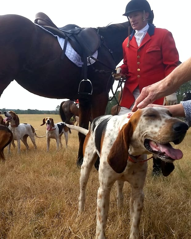 what-is-fox-hunting