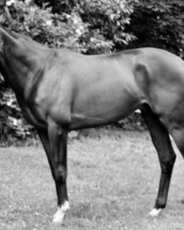 the-case-of-the-stolen-racehorse