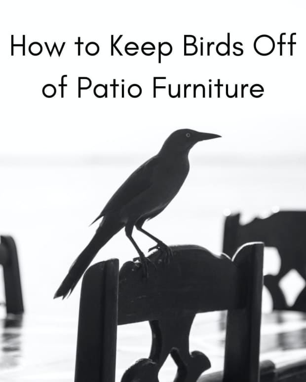 how-to-keep-birds-off-patio-furniture