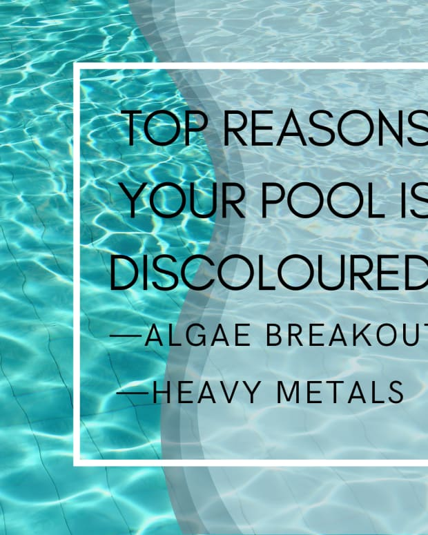 why-swimming-pool-turns-green-after-adding-chlorine