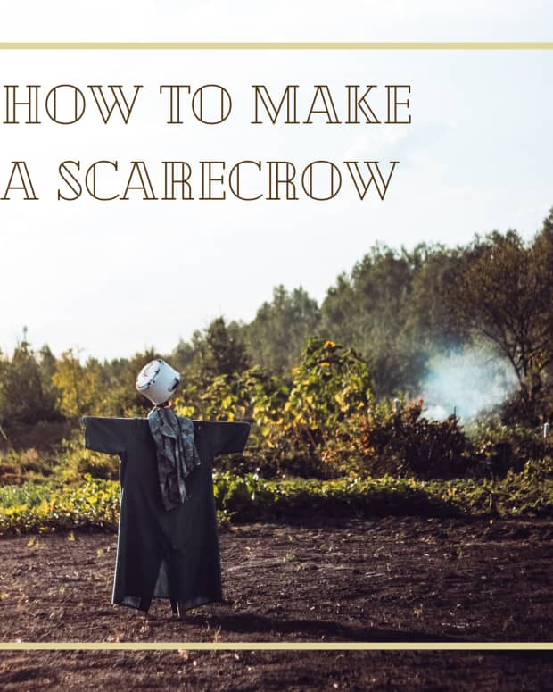 history-of-and-instructions-for-making-scarecrows