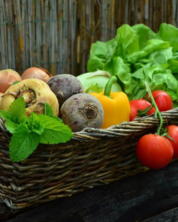 can-diet-help-control-asthma-symptoms