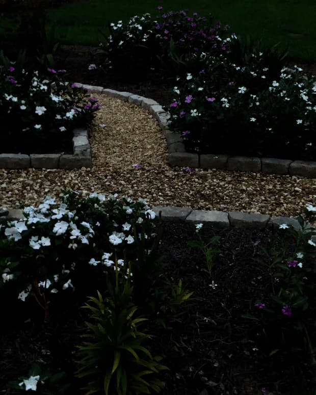simple-steps-to-create-a-night-garden