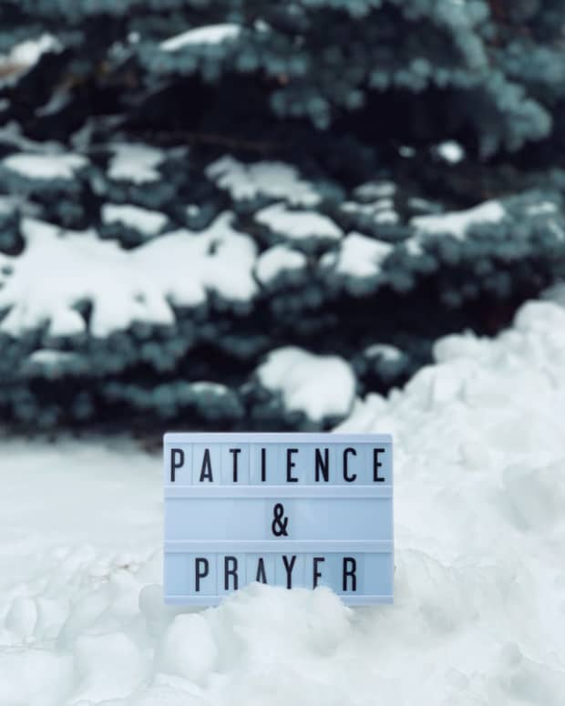 thankfulness-project-insight-gives-patience