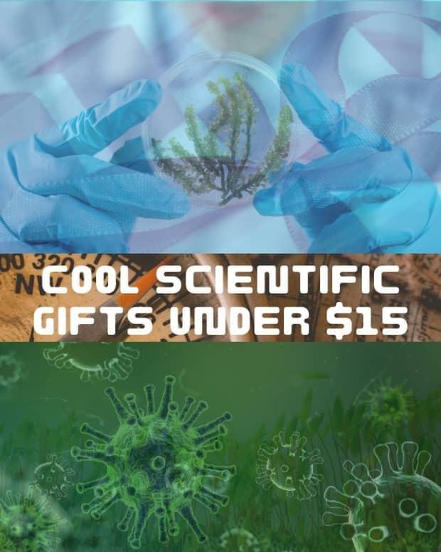 best-gift-ideas-under-15