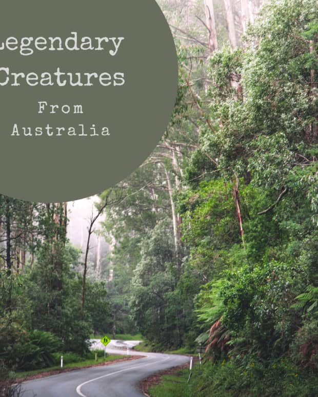 legendary-creatures-of-australian-myth-and-folklore