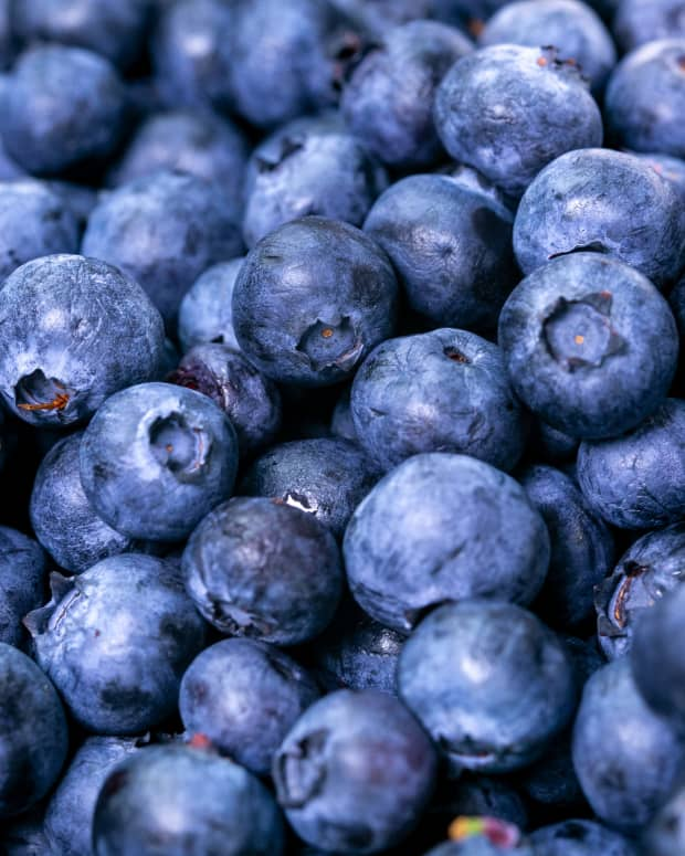 blueberries-are-tasty-or-blue-top-ten-benefits-of-blueberries