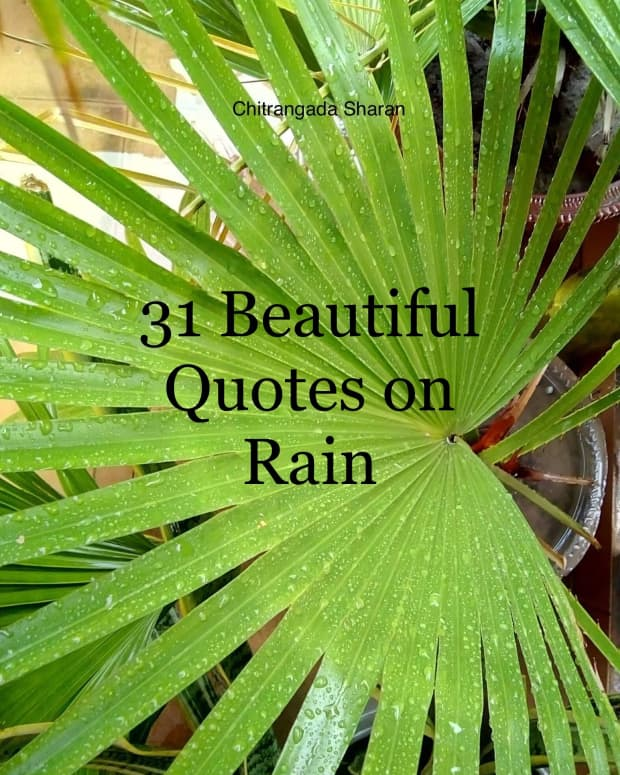31-beautiful-rain-quotes-to-wash-away-the-pain