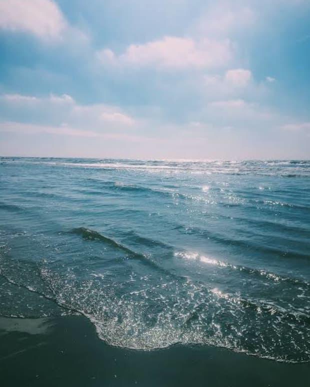 sea-of-words