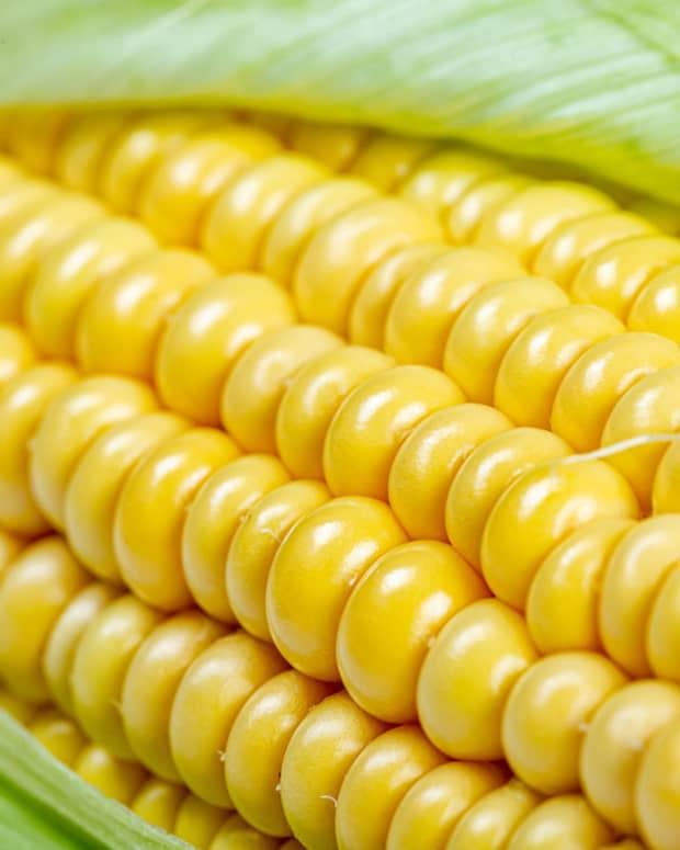 corn-has-many-benefits