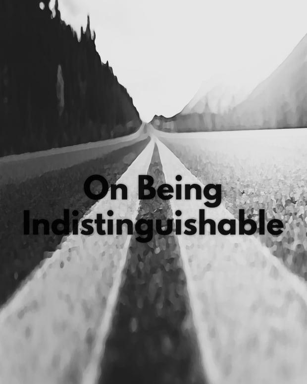 on-being-indistinguishable-short-story-fiction