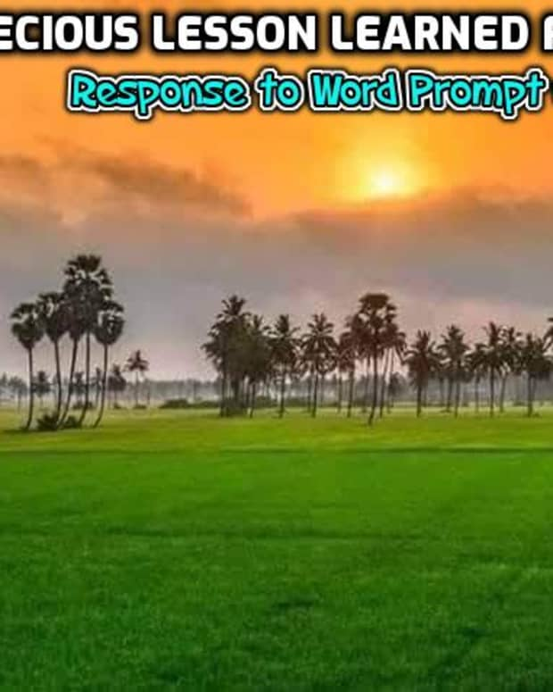 poem-precious-lesson-learned-from-life-response-to-word-prompt-of-week-26