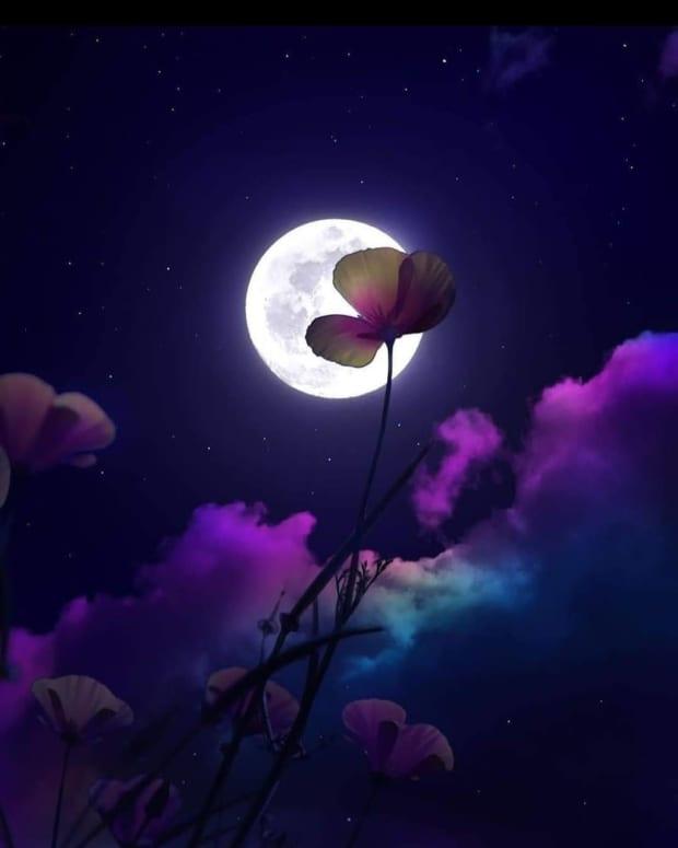 oh-dear-night