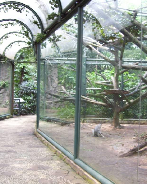 worse-than-captivity