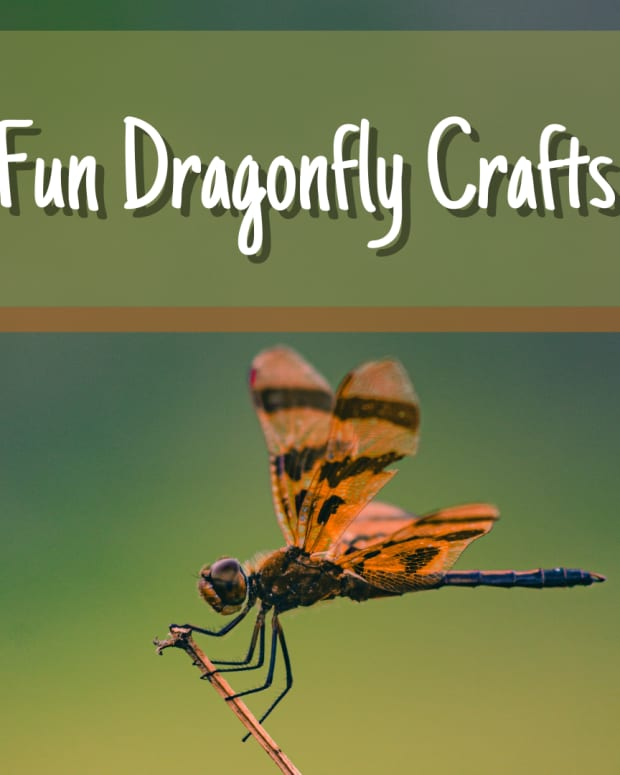 dragonfly-crafts-for-all-ages