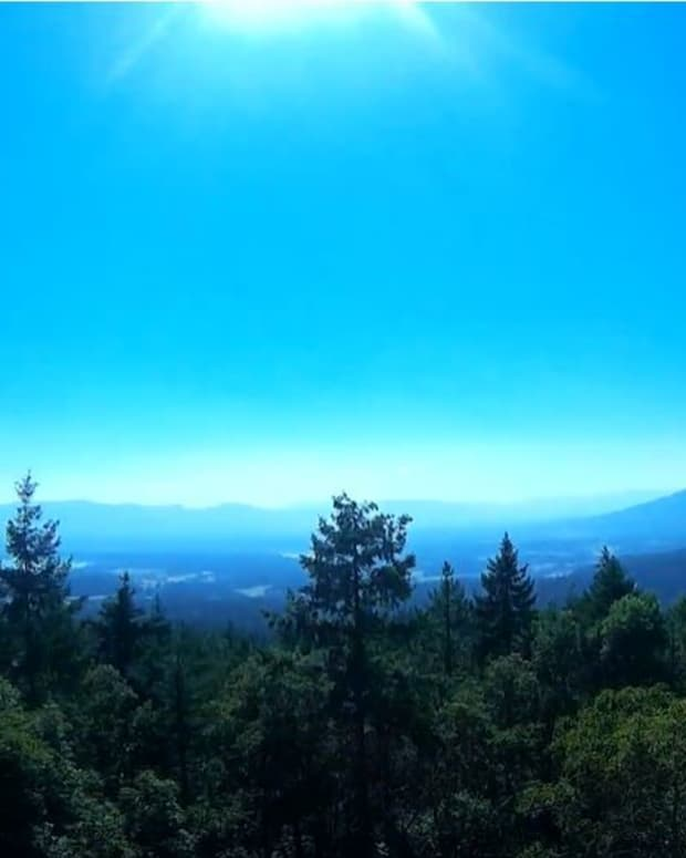hiking-trails-near-crofton-british-columbia-on-vancouver-island