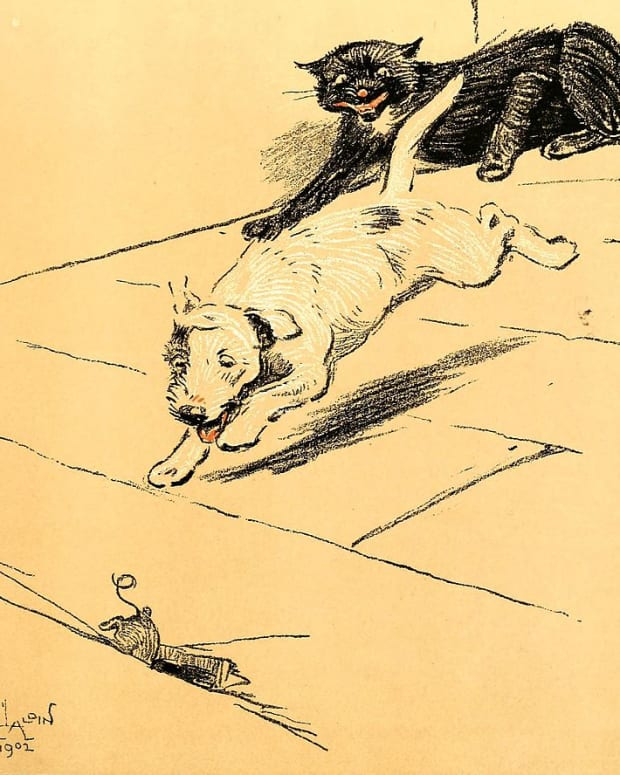 the-mouse-and-cat-and-dog-on-the-run